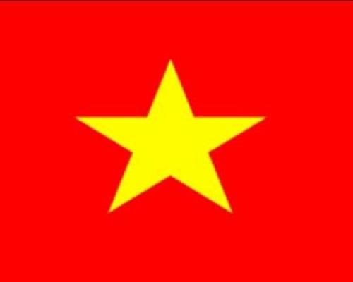 Cờ Việt Nam 360mmx560mm