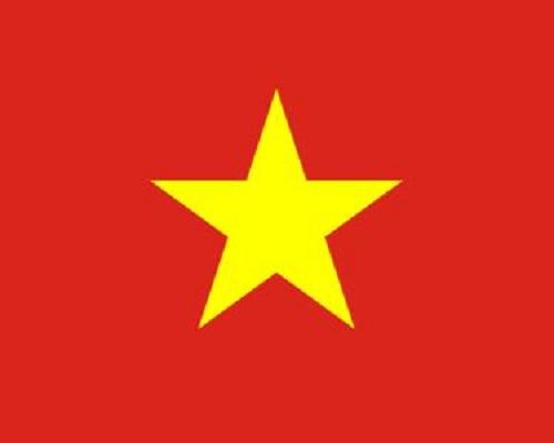 Cờ Việt Nam 1x1.5m